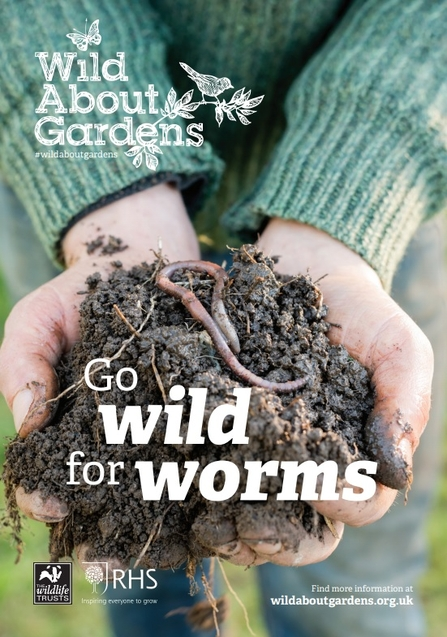 Wild about worms