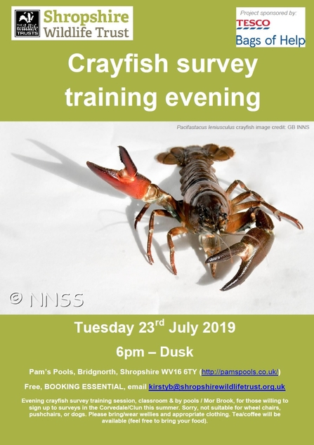 Crayfish survey training evening for volunteers: 23rd July, 6pm, Pam's Pools