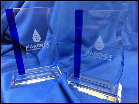 Marches Blue Business Awards trophies
