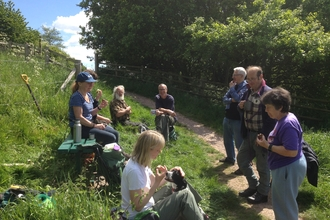 Greenfields workparty