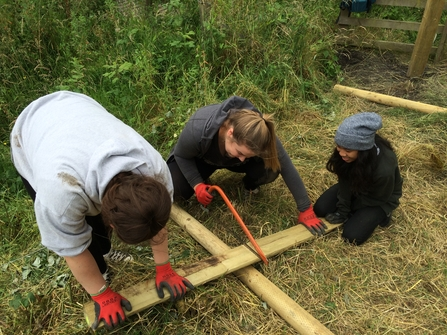 Young people sawing