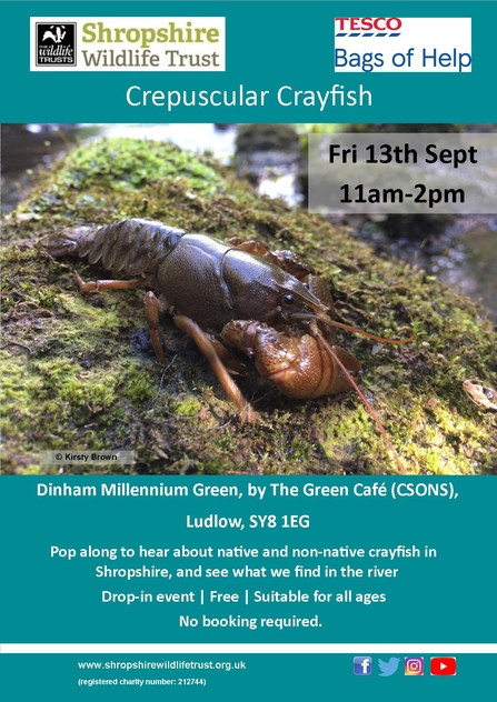 Crepuscular Crayfish river session poster - Ludlow