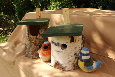 Birch log nest boxes