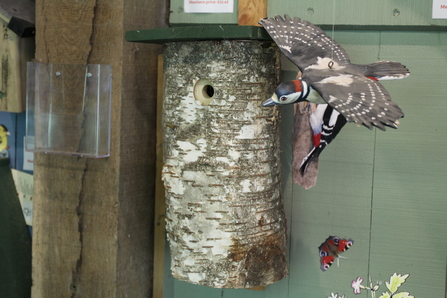 Birch log woodpecker box