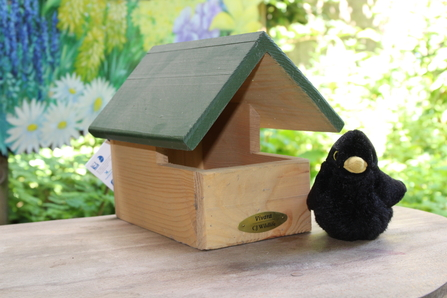 Blackbird Nest Box*